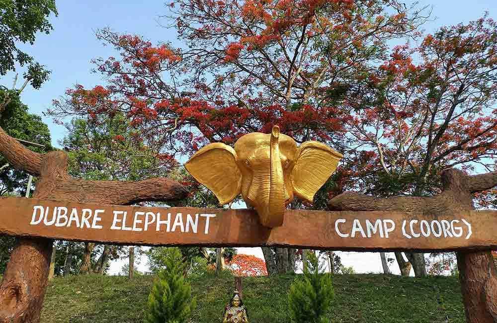 Dubare Elephant |  | 2 Days Itinerary Coorg