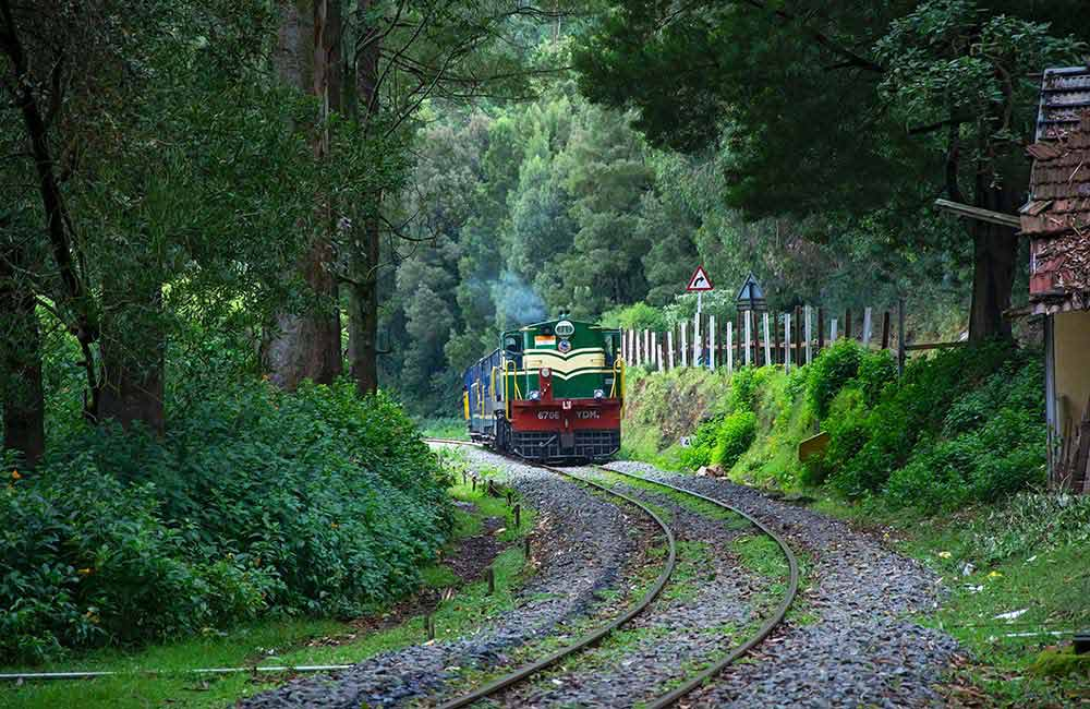 Train ride to Ketti | 2 days Itinerary Ooty